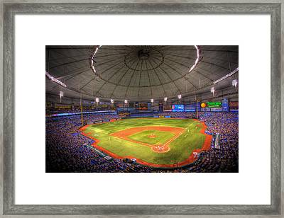 Tropicana Field Framed Print