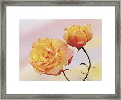 Tropicana Roses Framed Print by Jan Baughman