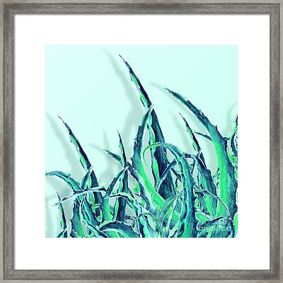 Tropikal Forever Framed Print by Mark Ashkenazi
