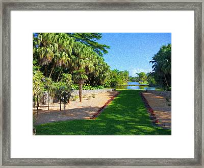 Troplical Garden At Fairchild Framed Print by Edier C