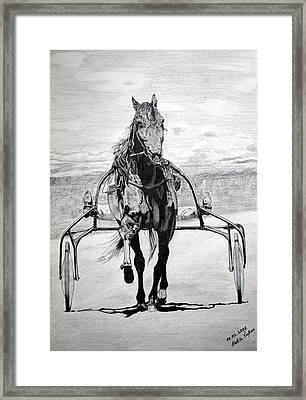 Framed Print featuring the drawing Trotter by Melita Safran