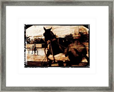 trotting 1 - Harness racing in a vintage post processing Framed Print by Pedro Cardona