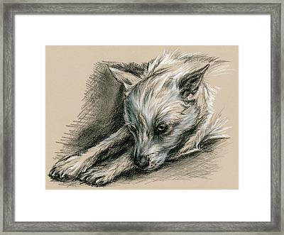 Troubled Pup Framed Print