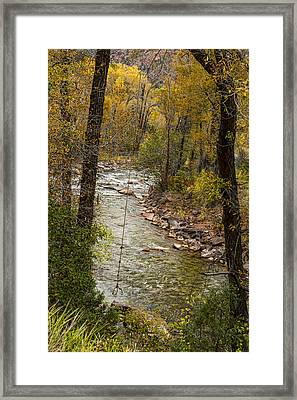 Trout Fishing Stream Crossing Swing Framed Print by James BO  Insogna