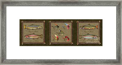 Trout Fly Panel Framed Print by Jon Q Wright