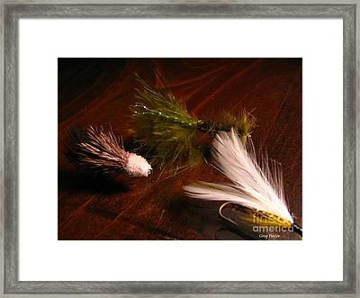 Trout Flys Framed Print by Greg Patzer