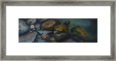 Trout River Rock Two Framed Print