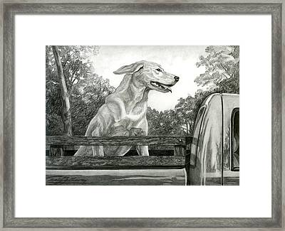 Truck Queen Study Framed Print by Craig Gallaway