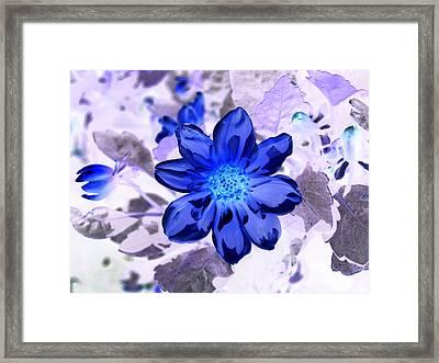 True Blue Framed Print by James Granberry