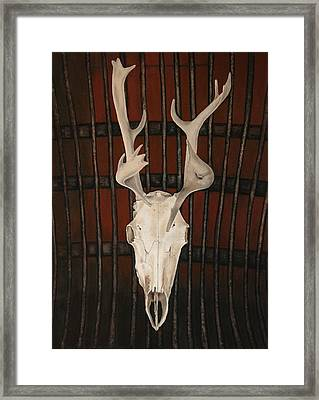 True Face               Framed Print by Shirley McMahon