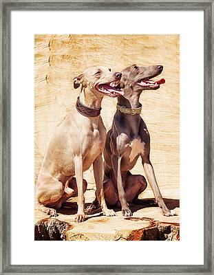 True Friendship Framed Print
