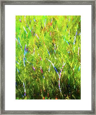True Framed Print by Heidi Scott