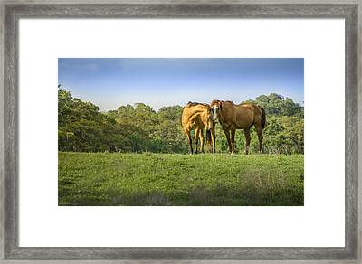True Love Framed Print by Debbie Karnes
