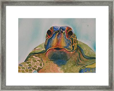 Truman Framed Print by Gayle  George