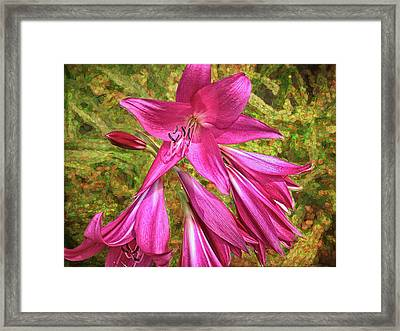 Framed Print featuring the photograph Trumpet Flowers by Lewis Mann