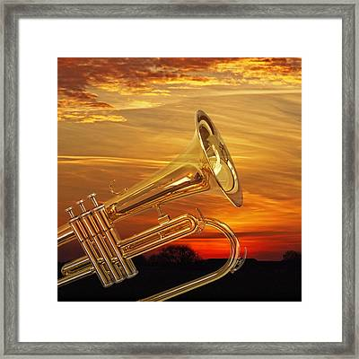 Trumpet Sunset Framed Print