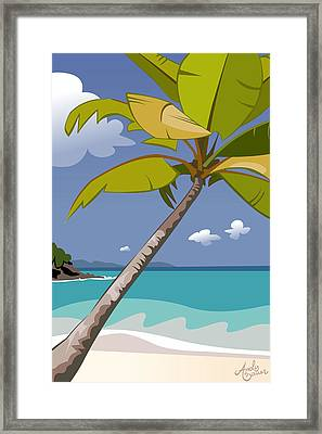 Trunk Bay Framed Print by Andy Bauer