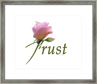 Trust Framed Print by Ann Lauwers