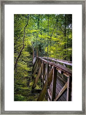 Trusted Suspension Framed Print by Larry Jones