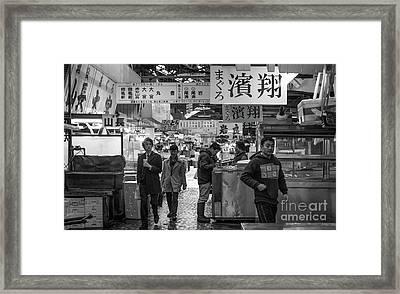 Tsukiji Shijo, Tokyo Fish Market, Japan 2 Framed Print