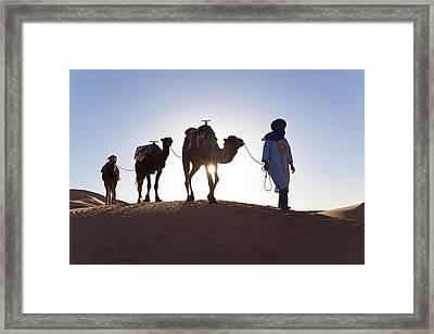 Tuareg Man With Camel Train, Sahara Desert, Morocc Framed Print by Peter Adams