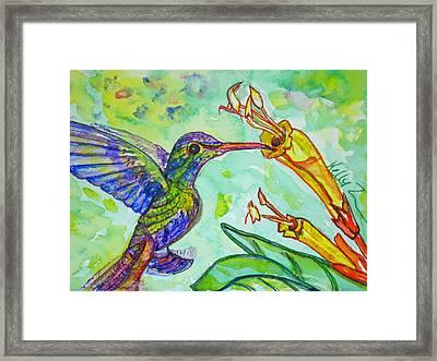 Tubular Nectar Framed Print by Kelly     ZumBerge