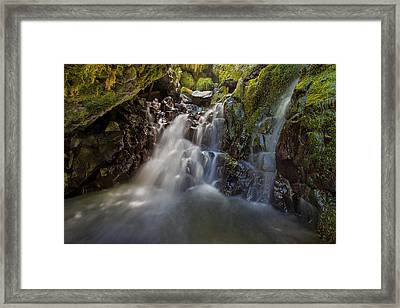 Tucked Away In Gorton Creek Framed Print by David Gn