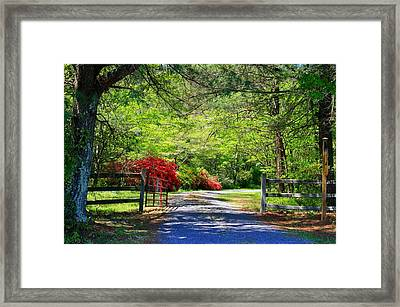 Framed Print featuring the photograph Tucked Away by Kathryn Meyer