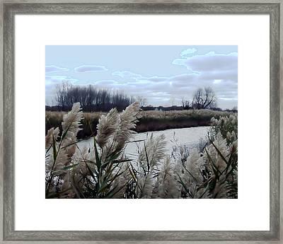 Tucked Away Framed Print by Natalie Bollinger