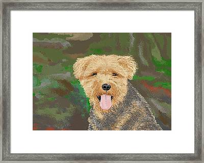 Tucker The Welsh Terror Framed Print by Carole Boyd