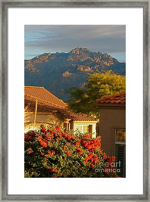 Tucson Beauty Framed Print