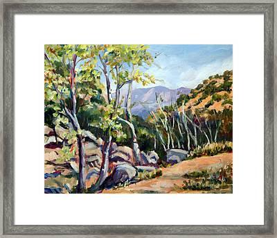 Tucson I Framed Print