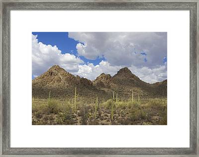 Tucson Mountains Framed Print by Elvira Butler