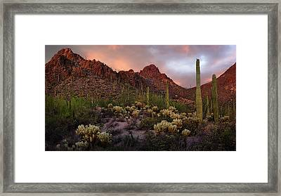 Tucson Mountains Sunset Framed Print