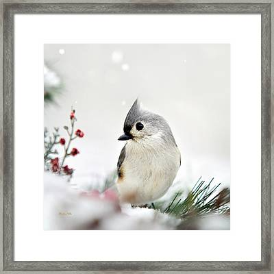 Tufted Titmouse Square Framed Print by Christina Rollo