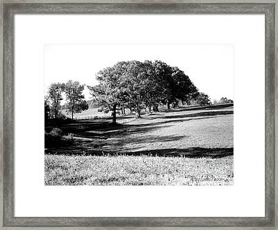 Tufts Land At Route 30 Framed Print