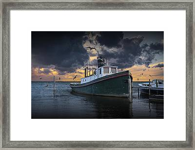 Tugboat In The Harbor With Flying Gulls Framed Print