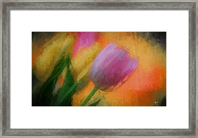 Tulip Abstraction Framed Print by TK Goforth