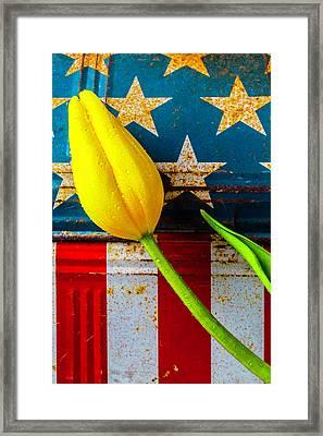 Tulip And Old Lunch Box Framed Print