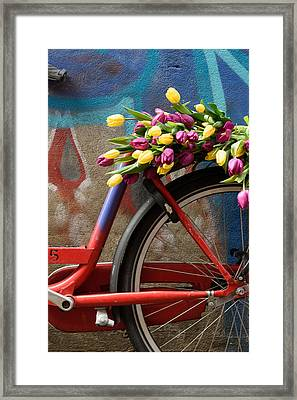 Framed Print featuring the photograph Tulip Bike by Phyllis Peterson