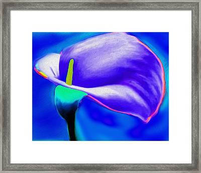 Tulip Blue By Nicholas Nixo Efthimiou Framed Print