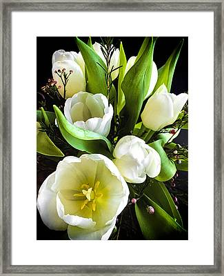 Tulip Bouquet Framed Print by Andrew Soundarajan