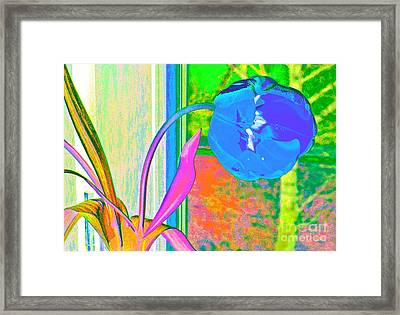 Tulip Dream In The Morning Framed Print by Loko Suederdiek
