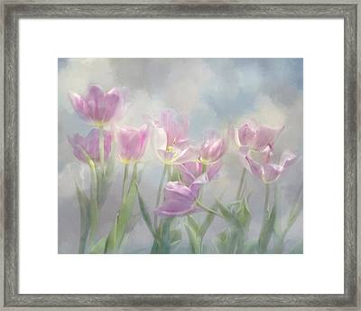 Tulip Dreams Framed Print by Ann Bridges
