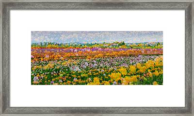 Framed Print featuring the photograph Tulip Dreams by Tom Vaughan