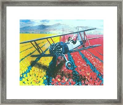 Tulip Fly-by Framed Print by George I Perez