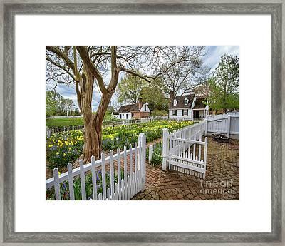 Tulip Garden Colonial Williamsburg  Framed Print