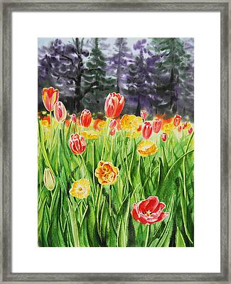 Tulip Garden In San Francisco Framed Print by Irina Sztukowski