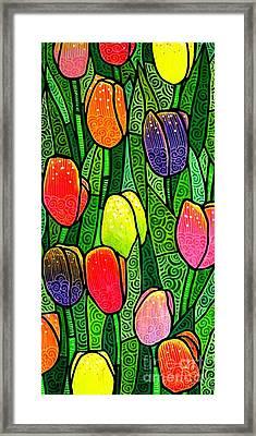Tulip Glory Framed Print by Jim Harris