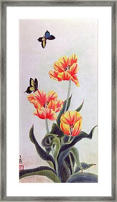 Tulip I Framed Print by Ying Wong
